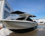 Boston Whaler 270 dual shades