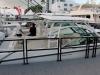 Boston Whaler 270 Vantage-7