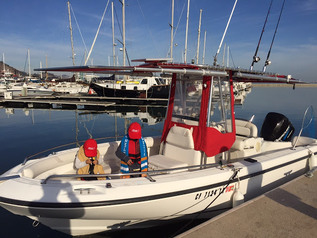 DIY Install of 2 Shades on Boston Whaler 210 Outrage T-Top | SureShade